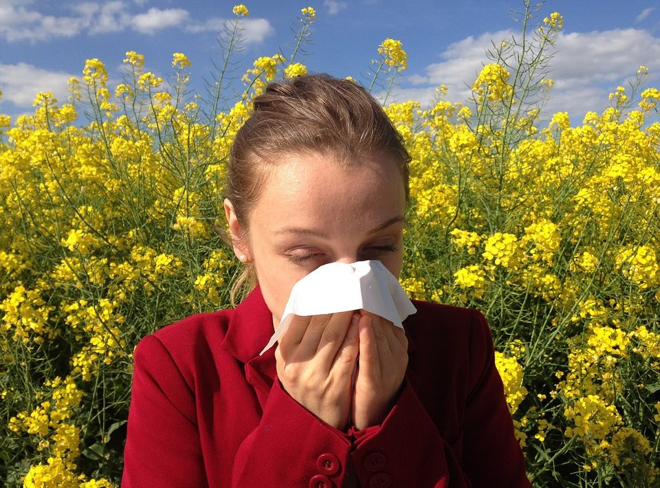 Allergies occur when the immune system overreacts to substances